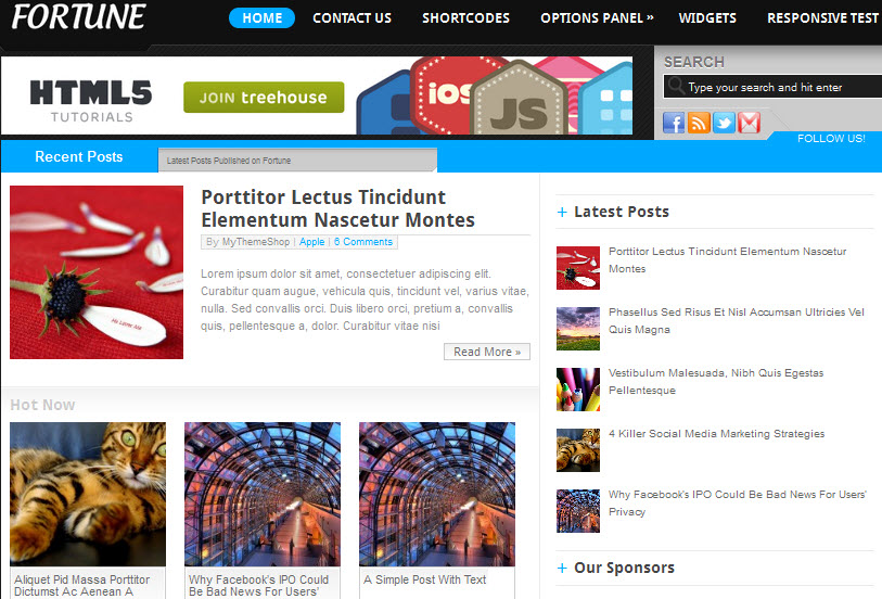 Fortune Adsense Theme
